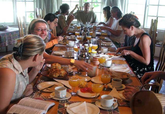 breakfast-antbear