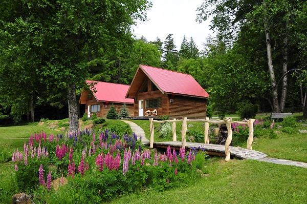 Tweedsmuir-Park-Lodge-Bob-Cat-and-Blackbear-Cabins-Photo-Mike-Wigle-small